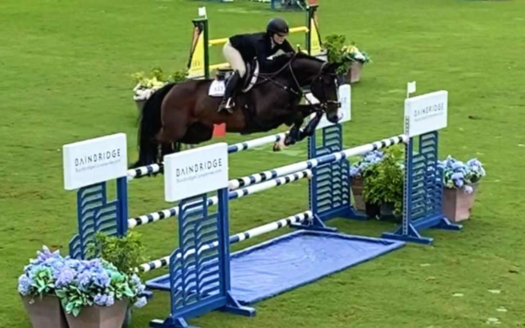 Clinto goes to WEF